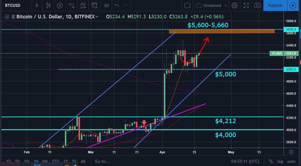 BTC Price Movement Chart